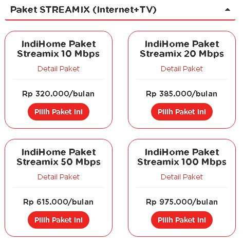 PAKET INDHOME (STREAMIX)